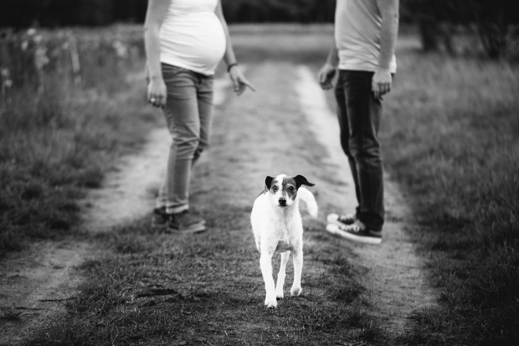 entspanntes Paarshooting und Babybauch Shooting mit Hund in Waghäusel