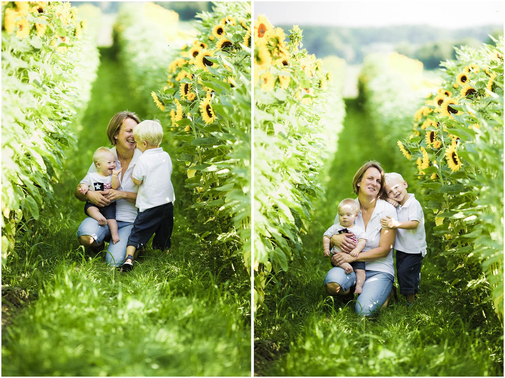 Familienfotos von Thea Philip Johannes Verena und Peter bei Speyer Familienfoto Sonnenblumen