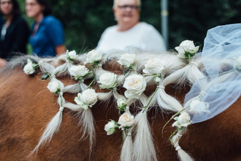 Hochzeitsfotograf Kraichgau im Lago Bruchsal - Sabine & Robert Hochzeitsfotograf Kraichgau Lago Bruchsal Sabine Robert 54